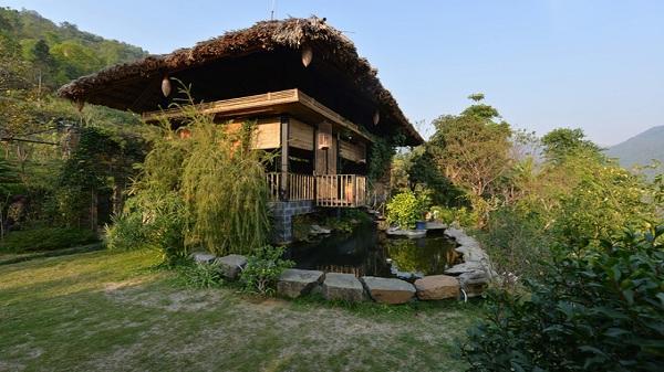Ngôi nhà lá giản dị ở Hòa Bình bao bọc bởi cây xanh khiến ai cũng thích