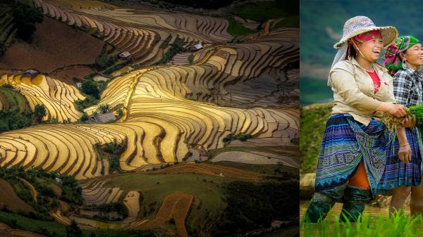 Cực phẩm Tây Bắc: Mù Cang Chai mùa nước đổ