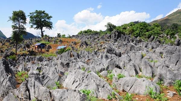 Chùm ảnh: Khám phá vẻ đẹp kỳ thú của cao nguyên đá Tủa Chùa, Điện Biên