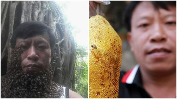 """Rùng mình cảnh dị nhân """"vua ong"""" ở Điện Biên chơi đùa với hàng nghìn con ong rừng"""