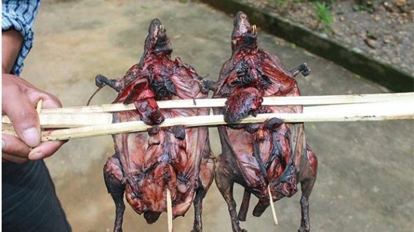 Đến Hòa Bình, thưởng thức thịt chuột rừng