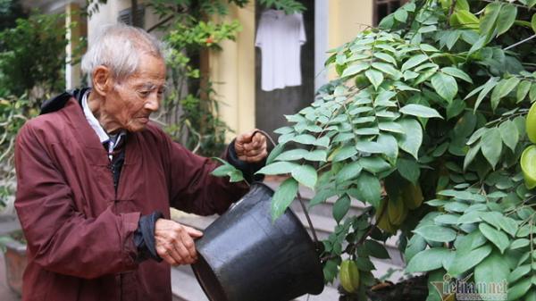 Ninh Bình: Bí quyết giúp cụ ông 101 tuổi vẫn cuốc đất, trồng cây