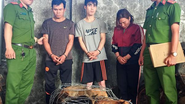Băng nhóm trộm 14 tấn thịt chó trong một năm