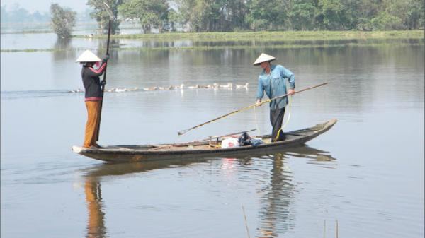 Ninh Bình: Xử lý nghiêm việc sử dụng xung điện đánh bắt thủy sản